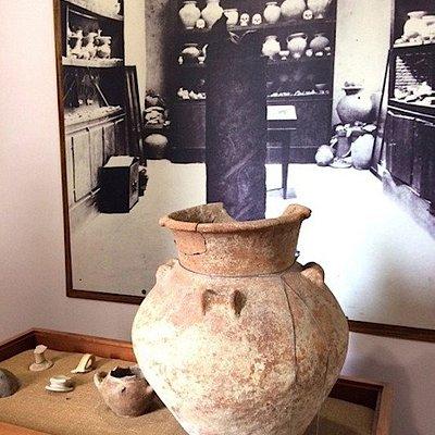 """Museo Archeologico """"Guglielmo Allevi"""""""