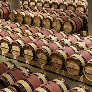 Domaine du Castel- The Cellar