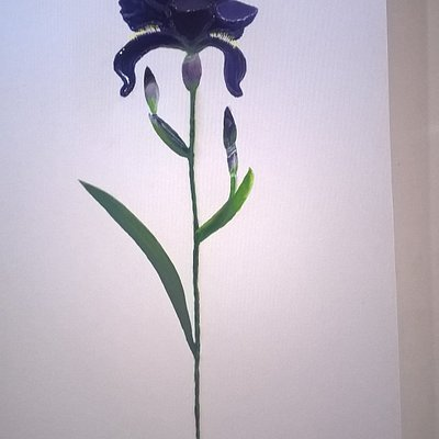 Glossy Resin technique for this Dutch Iris