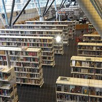 rows of book cases