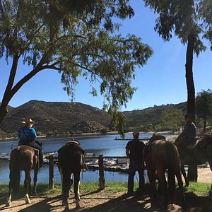 Looking for something more adventurous? Come on a Destination trail ride with us.