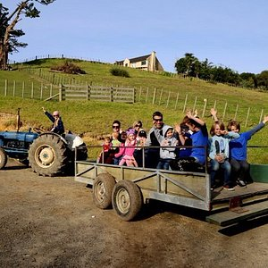 Tractor ride with Farmer Crystal