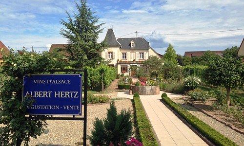 Vins d'Alsace Albert Hertz