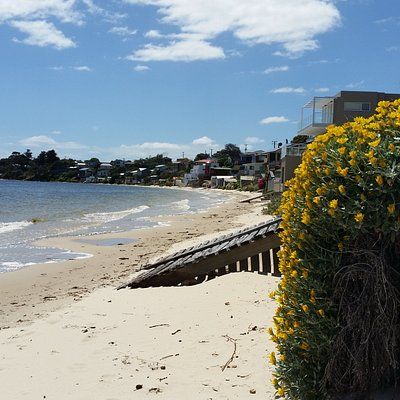 When we arrived in Opossum Bay there was nothing to do but lap up the serenity It was beautiful.