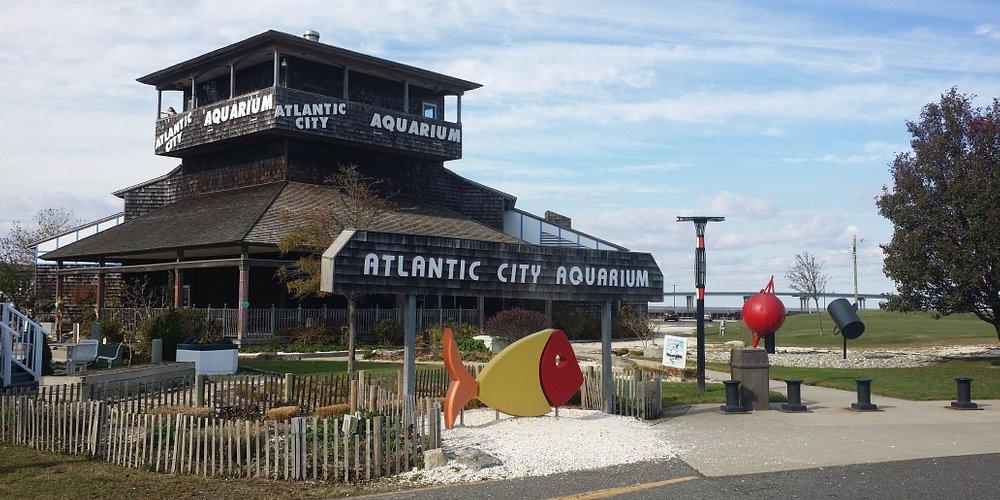 Atlantic City Aquarium Historic Gardner's Basin