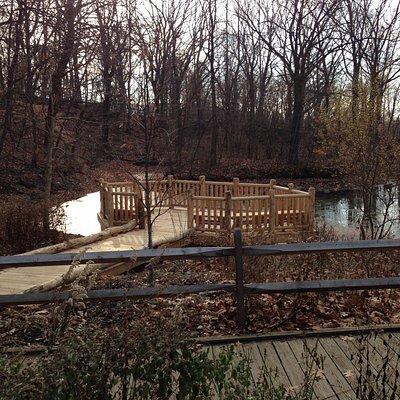 Lake overlook