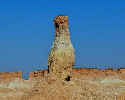 Datong Earth forest