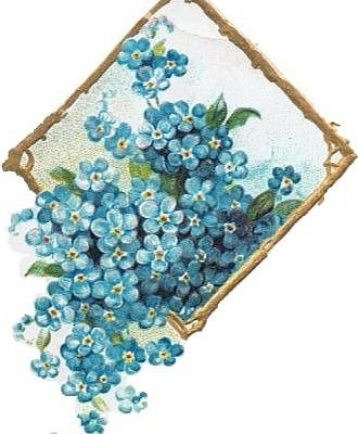 Belle Fleur Store - Garden themed gifts and homewares