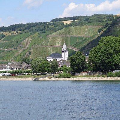 Вид на церковь с Рейна