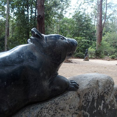 Sculpture of Wombat with a Cockatoo made from black Chillagoe marble