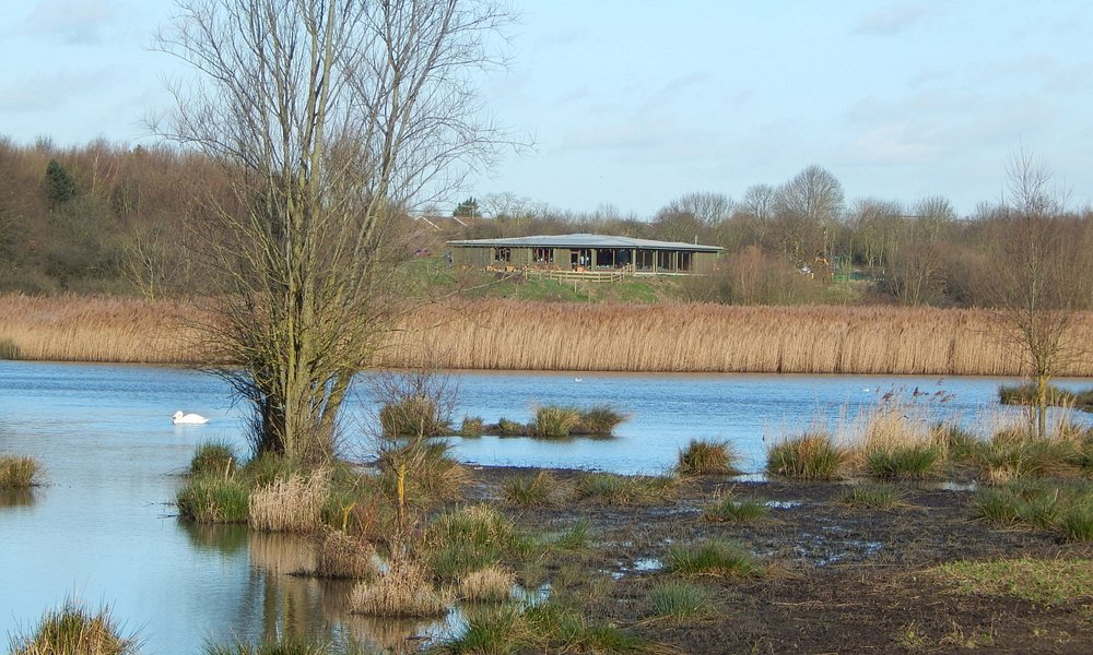 Ingrebourne Valley Visitor Centre view from the marsh