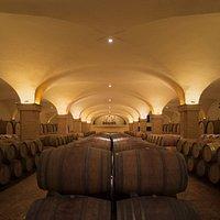 The aging cellar