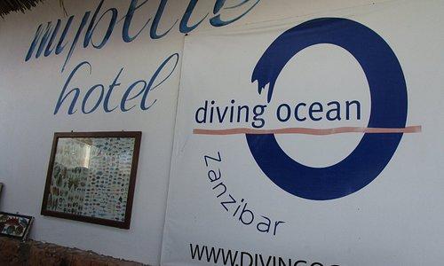 Diving Ocean