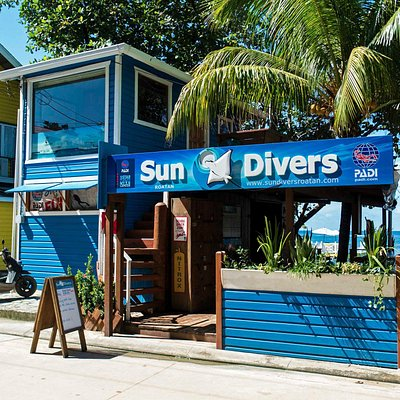 New Sun Divers sing!