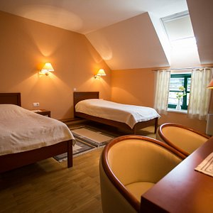 Spacious room suitable for two person.  Two single beds (90x200) and additional sofa bed (140x20