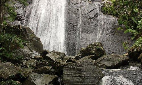 El Yunque - the tower, La Mina Falls and Coco Falls