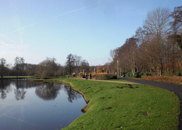 city park view