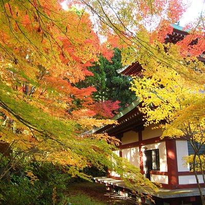Fall foliage at Dairyuji temple