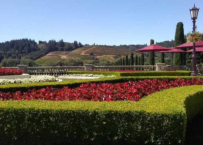 Beautiful Garden Tours and Plant Tours