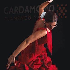 El único tablao flamenco recomendado por el New York Times.