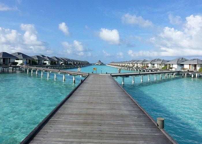 Sun Island Maldives water bungalows