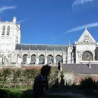 La cathédrale vue de la Motte Castrale