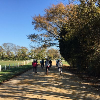 Signature Tour: A Journey Along the James departs and ends at Upper Shirley Vineyards