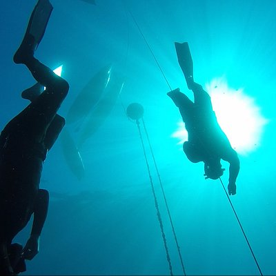 line diving