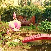 Una bella estampa de este hermoso jardín japonés.