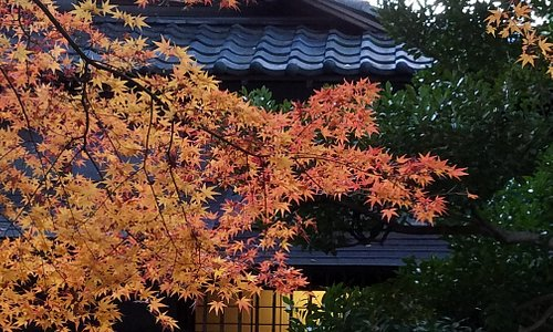 庭園の紅葉も見事です。
