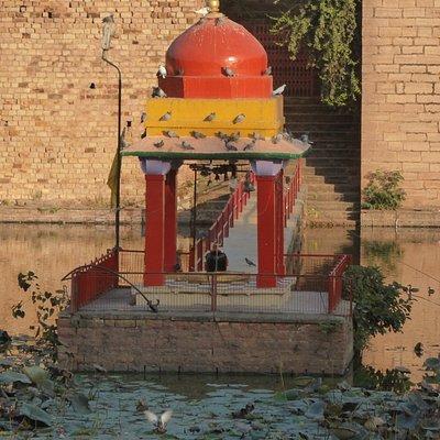 The small shrine near the centre of the pond