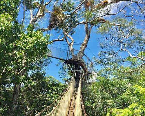 Explorama Canopy Walkway
