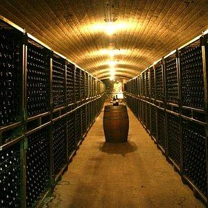 Calado botellero: el lugar donde nuestros vinos terminan de afinarse