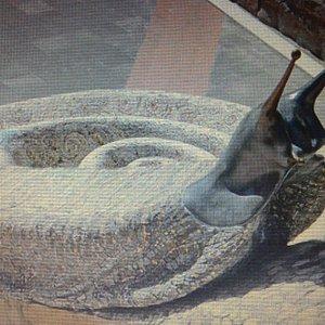 Fontana La Chiocciola