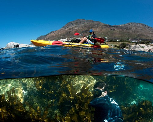 whether your fancy is sea kayaking or exploring the magical kelp forests, this is the place to b
