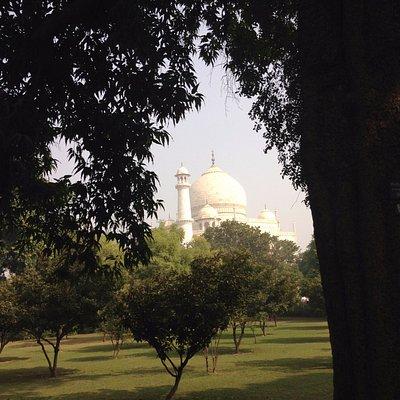 Beautiful Taj Mahal