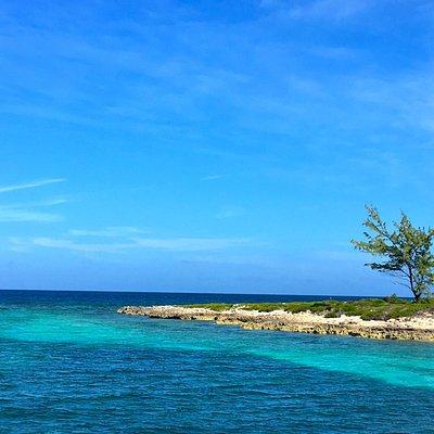 une île paradisiaque...