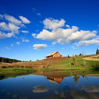 The tasting room as seen from our pond.