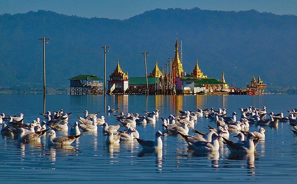 Shwe Myitzu Pagoda and gulls