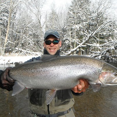West Michigan Steelhead