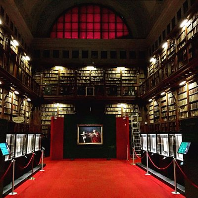 amazing biblioteca