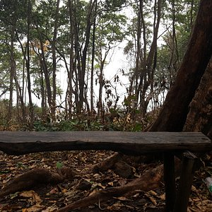 Small bench for seating & relaxation.