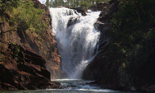 Waterfall in Mountain Pine Ridge