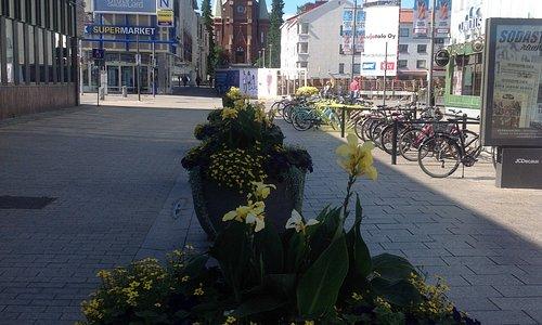 Вход в магазин находится на пешеходной торговой улице в центре города