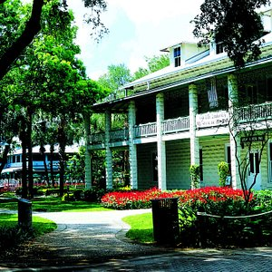 History Fort Lauderdale with Red Blooms