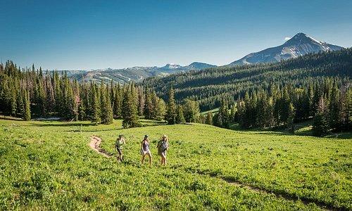 Hiking Beehive Basin | Audrey Hall Photography