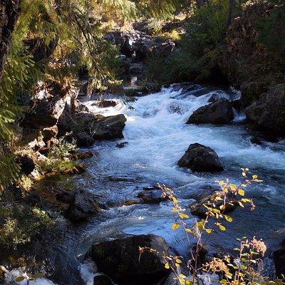 Rogue River Lava Tube (Far end).