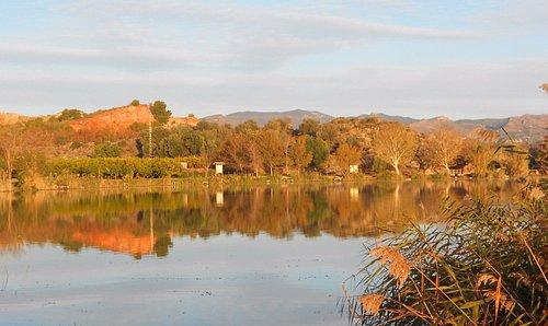 Laguna principal
