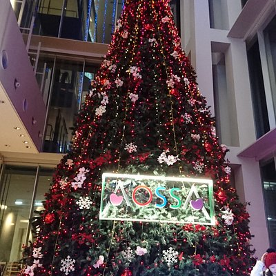 クリスマスツリーがきらっきらして気分もあがります(*^▽^)/★*☆♪