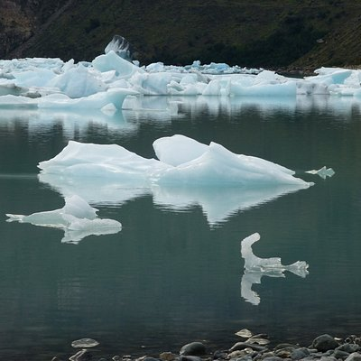 Floating icebergs in Lago Viedma